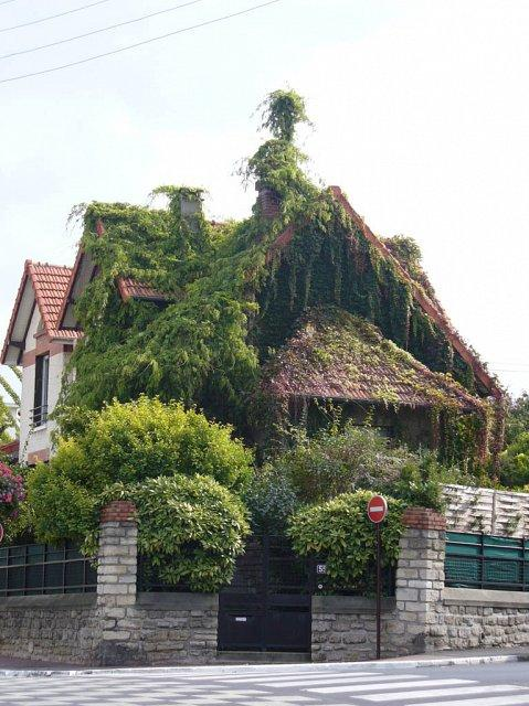 unusual home