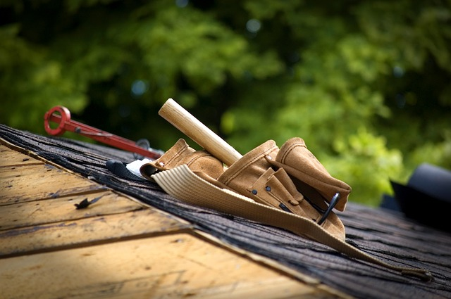 tool-belt-household