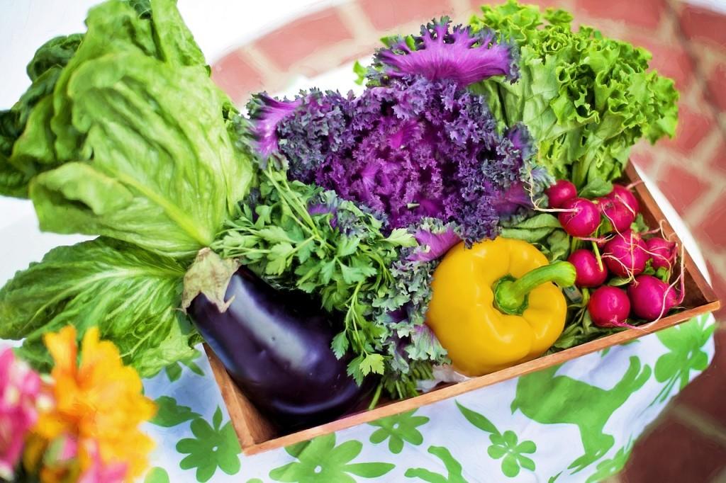 green garden veg
