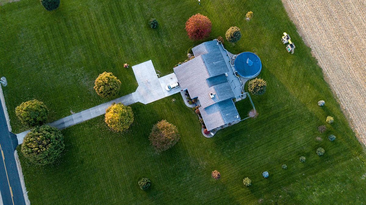 5 Handy lawn care tips for this summer